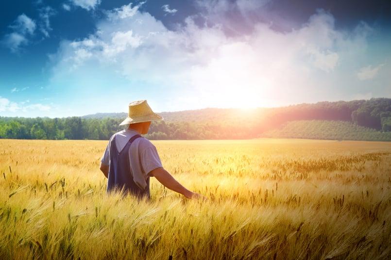idaho farm labor contractor license